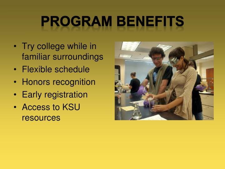 Program benefits1