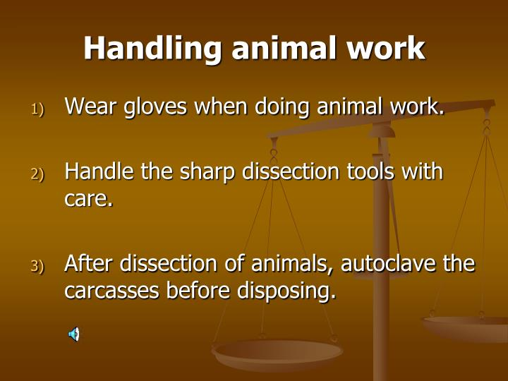 Handling animal work