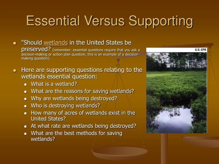 Essential Versus Supporting