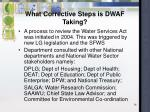 what corrective steps is dwaf taking