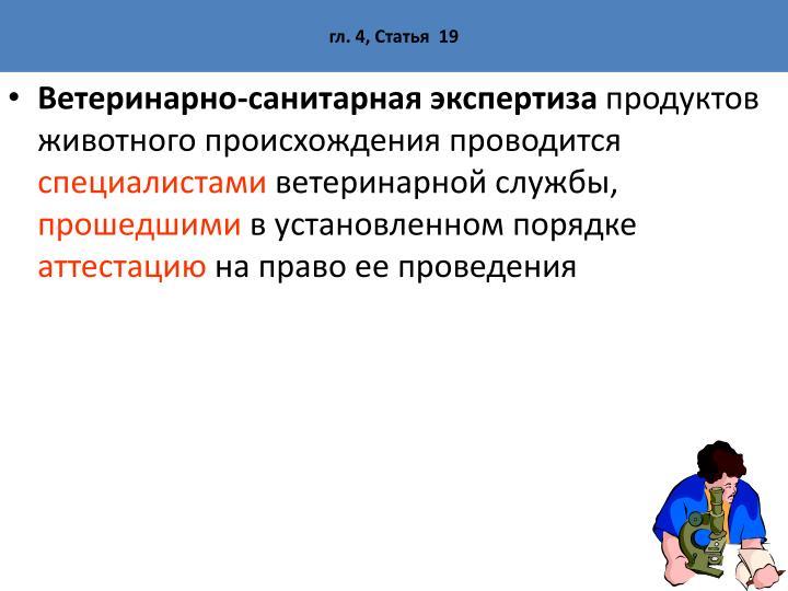 гл. 4, Статья  19