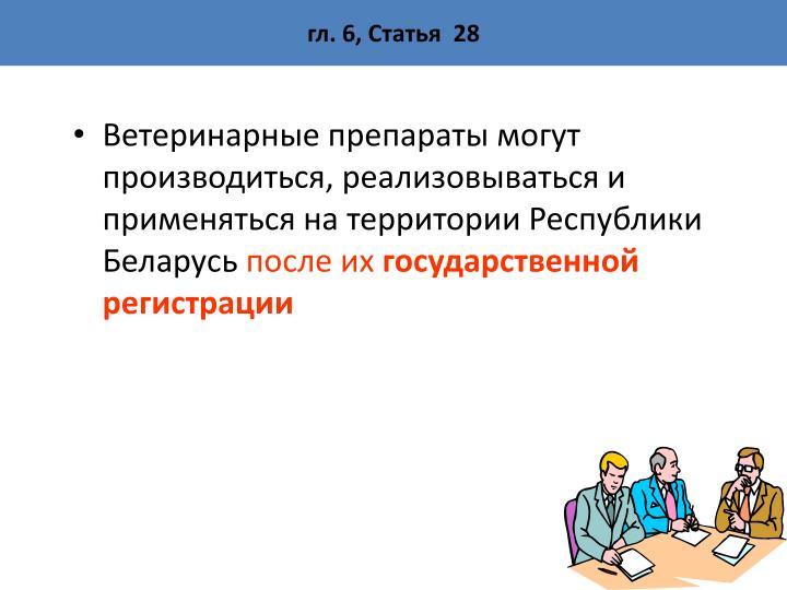 гл. 6, Статья  28