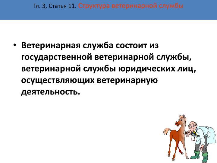 Гл. 3, Статья 11.