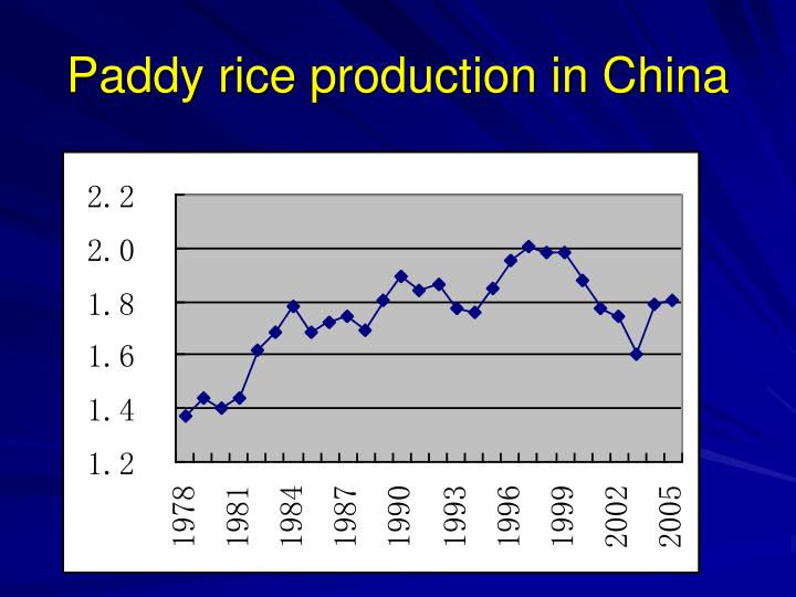 Paddy rice production in China