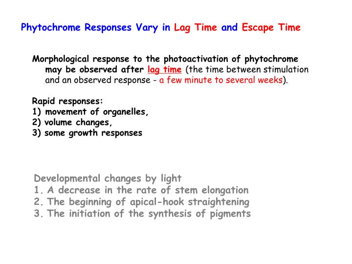 Phytochrome Responses Vary in