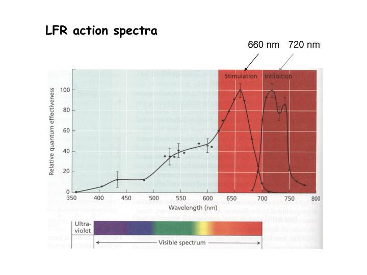LFR action spectra