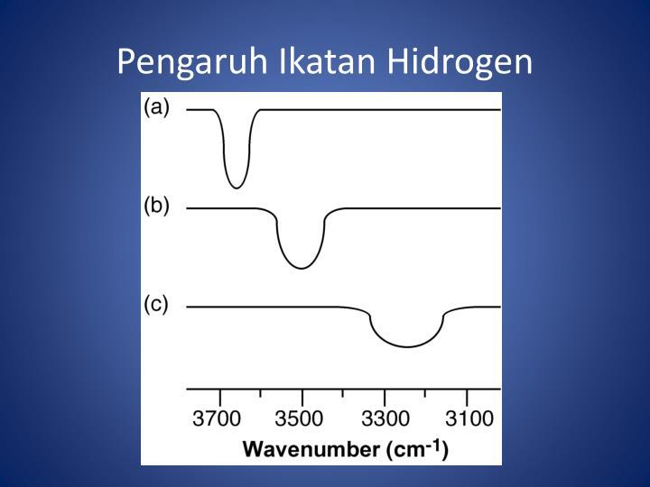 Pengaruh Ikatan Hidrogen