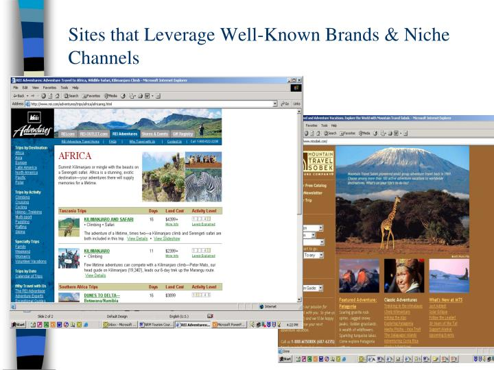 Sites that Leverage Well-Known Brands & Niche Channels
