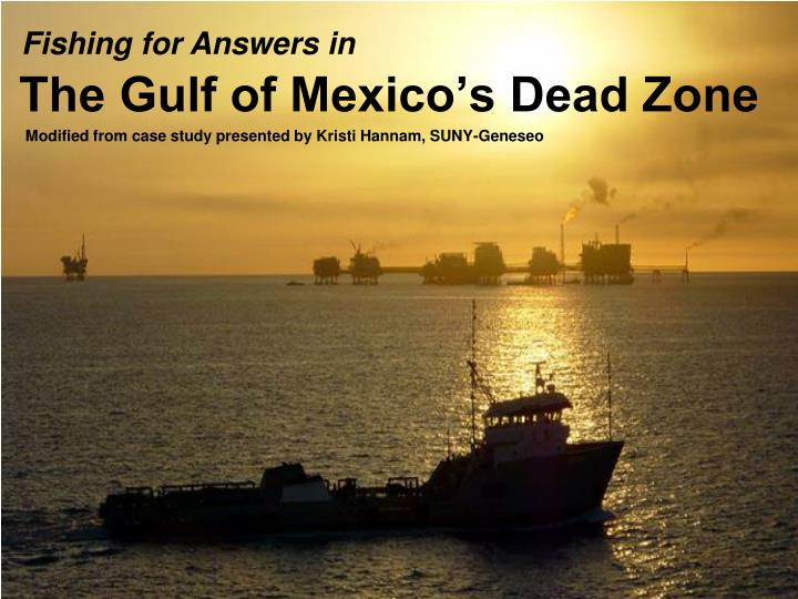 the gulf of mexico s dead zone n.