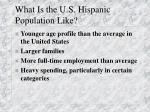 what is the u s hispanic population like