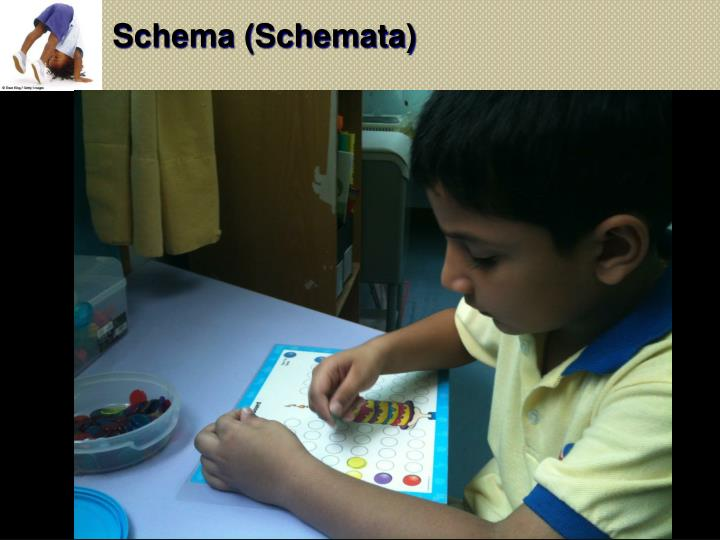 Schema (Schemata)