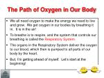 the path of oxygen in our body1