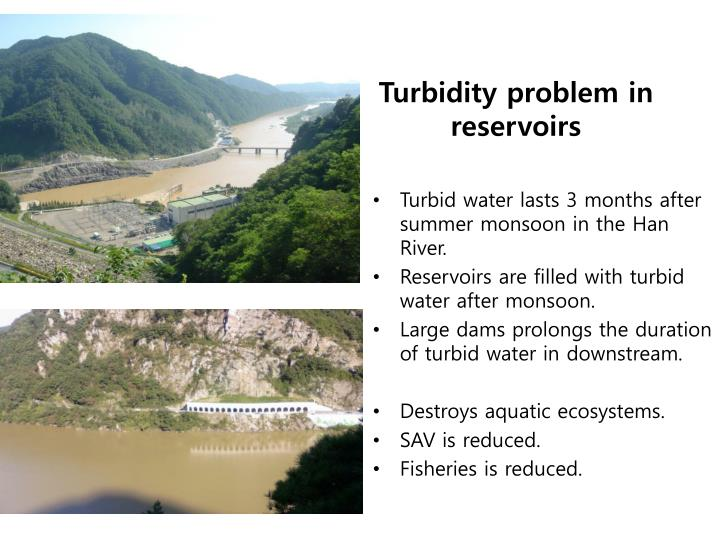Turbid water lasts 3 months after summer monsoon in the Han River.