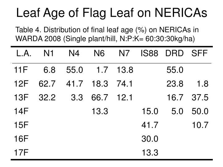 Leaf Age of Flag Leaf on NERICAs