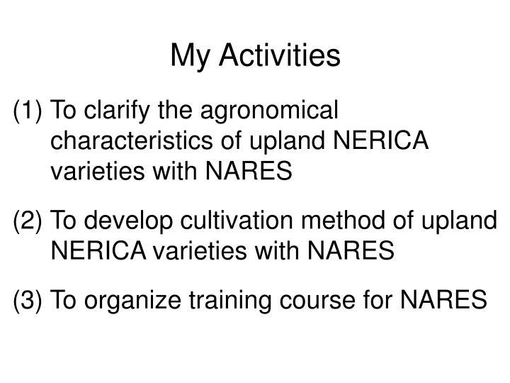My activities