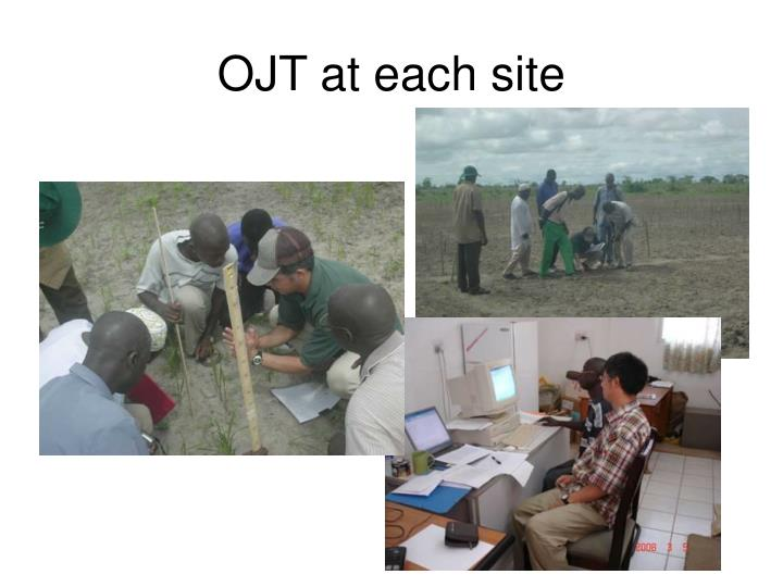 OJT at each site