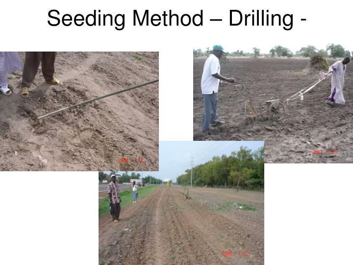 Seeding Method – Drilling -