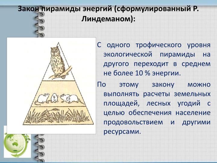 Регистрация: сформулируйте правила экологической пирамиды купить квартиру вторичного