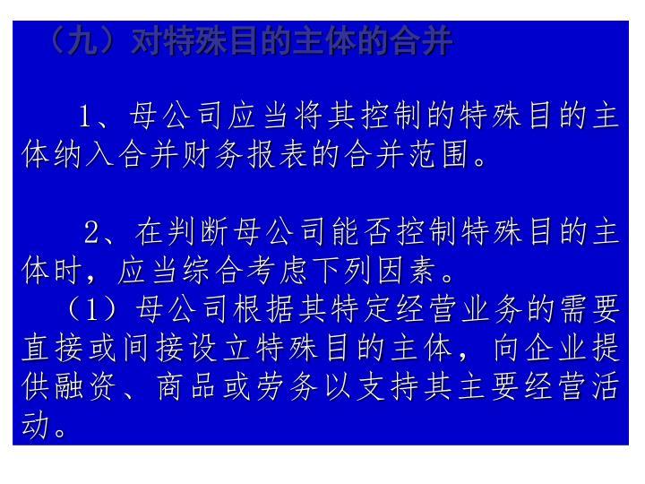 (九)对特殊目的主体的合并