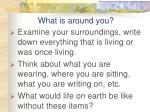 what is around you