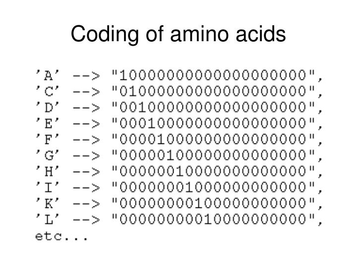 Coding of amino acids