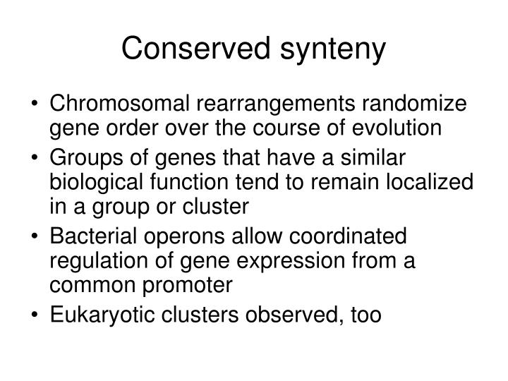 Conserved synteny