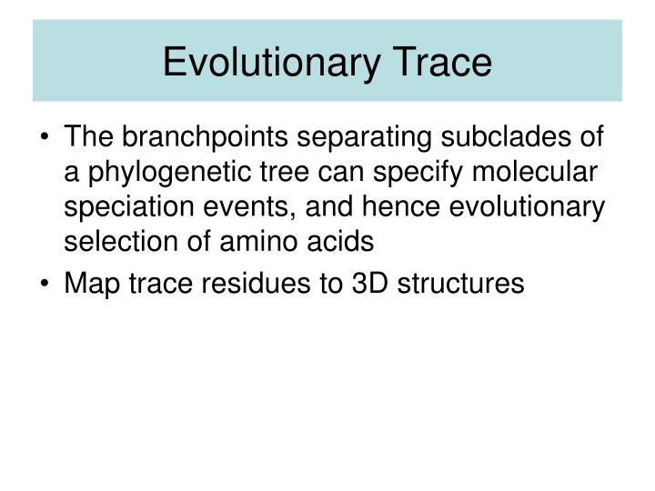 Evolutionary Trace
