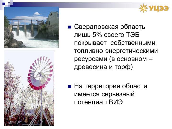 Свердловская область лишь 5% своего ТЭБ покрывает  собственными топливно-энергетическими ресурсами (в основном – древесина и торф)
