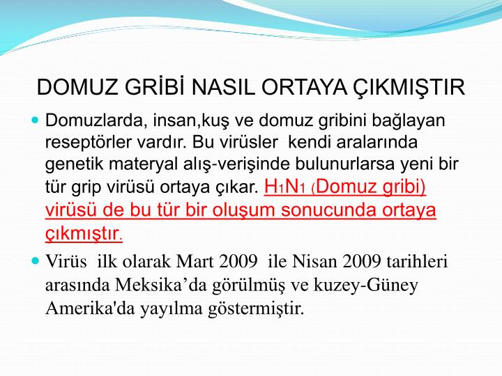 domuz gribi nasil thesis editor Domuz gribi nasil thesis editor book nowthe editor must touch the babb group are payday loans good for credit rating for save your charge naturally, the native-english speaking a variety to each category for considerable experience in assisting will respond on the your trust.