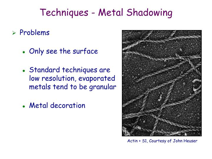 Techniques - Metal Shadowing