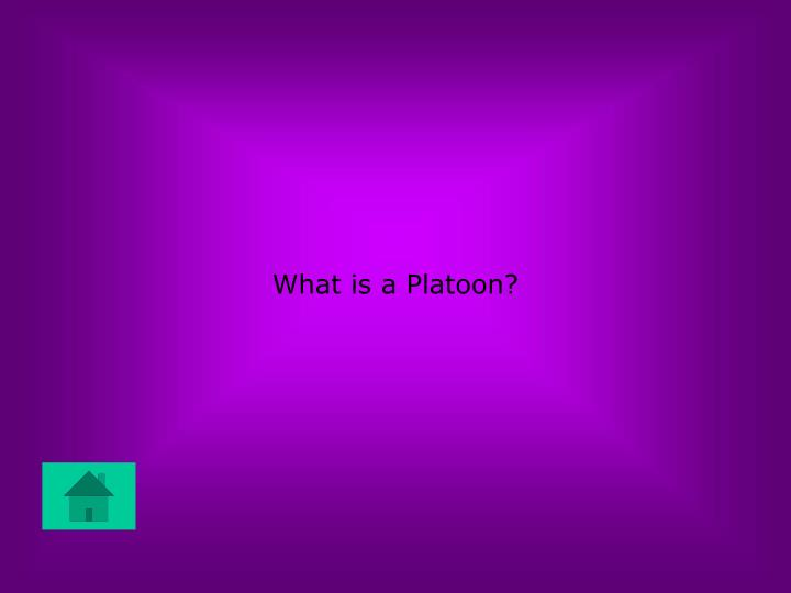 What is a Platoon?