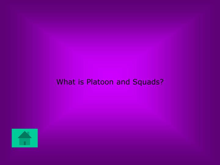 What is Platoon and Squads?