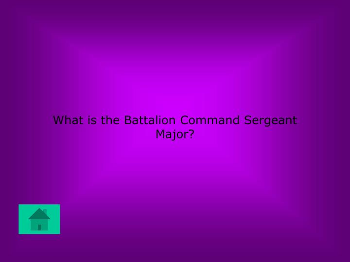 What is the Battalion Command Sergeant