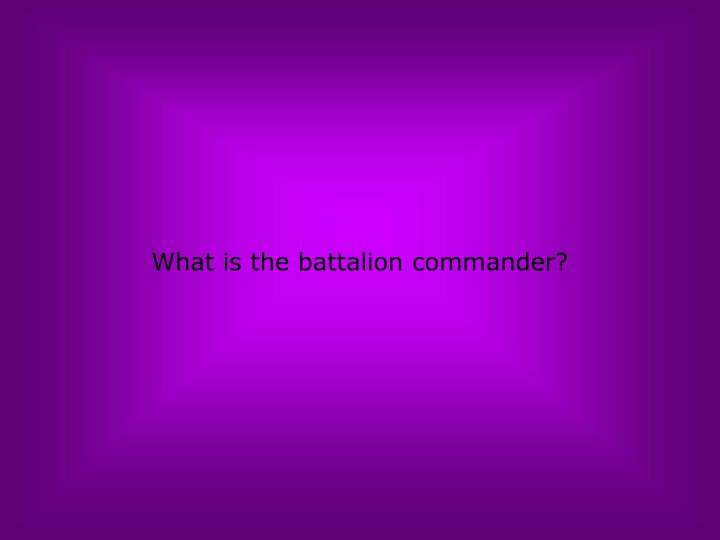 What is the battalion commander?
