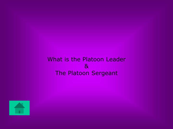 What is the Platoon Leader