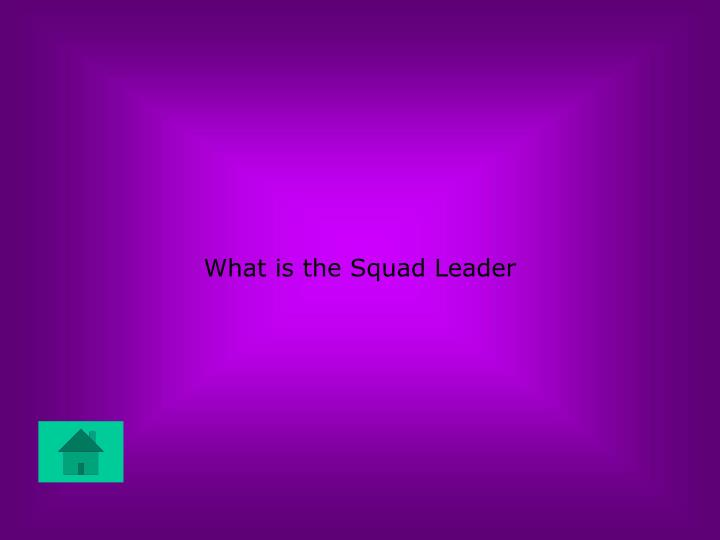What is the Squad Leader