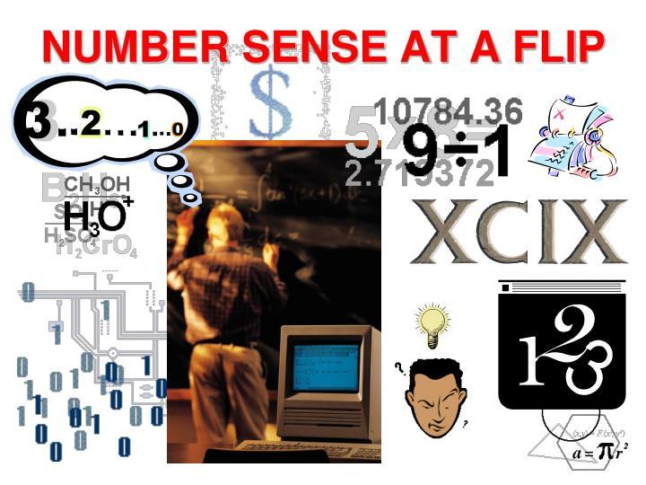 Number sense at a flip1