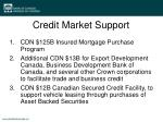 credit market support