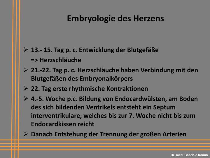 PPT - Dr. med. Gabriele Kamin PowerPoint Presentation - ID:5938672