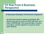 fx risk from a business perspective
