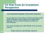 fx risk from an investment perspective