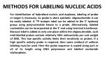 methods for labeling nucleic acids