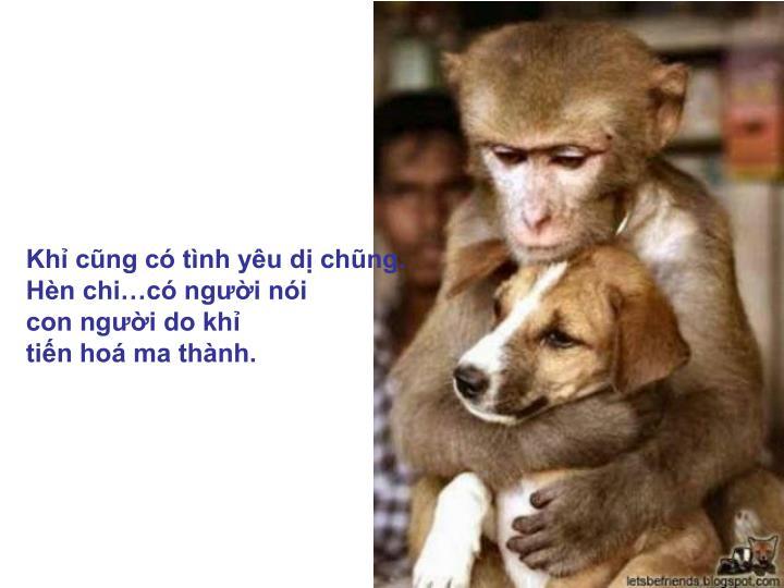 Khỉ cũng có tình yêu dị chũng.