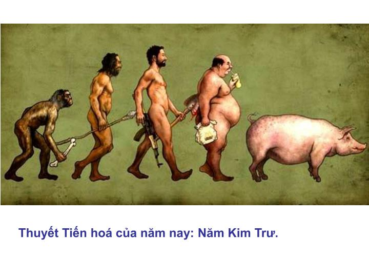 Thuyết Tiến hoá của năm nay: Năm Kim Trư.