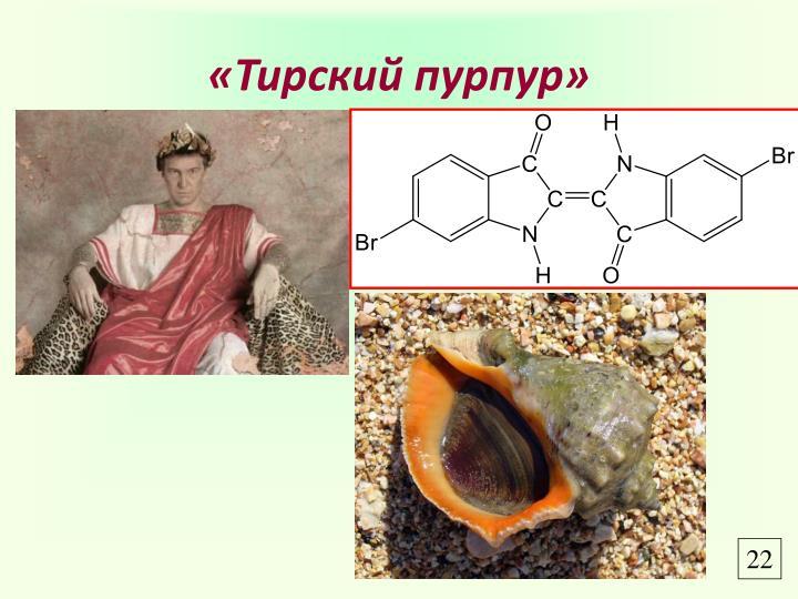 «Тирский пурпур»
