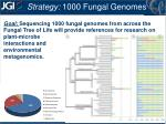 strategy 1000 fungal genomes