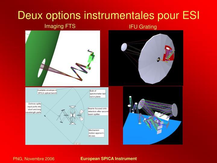 Deux options instrumentales pour ESI