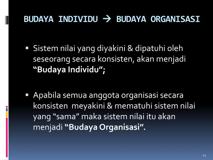 BUDAYA INDIVIDU