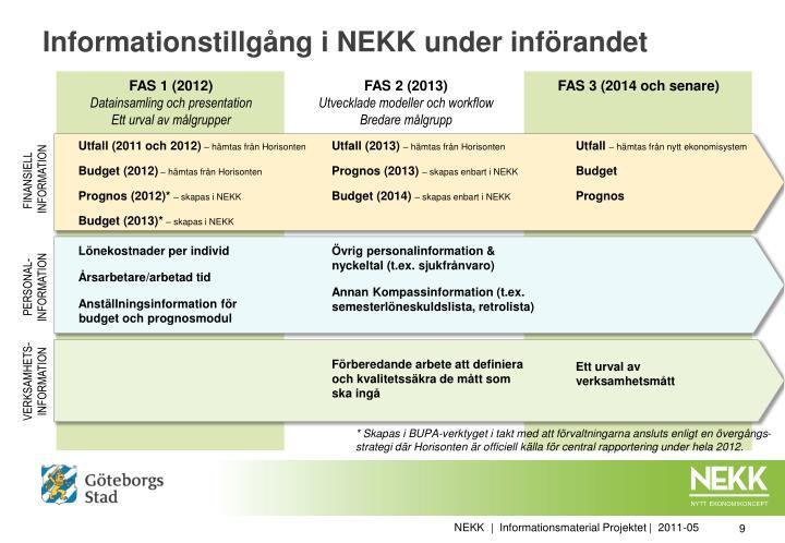 Informationstillgång i NEKK under införandet