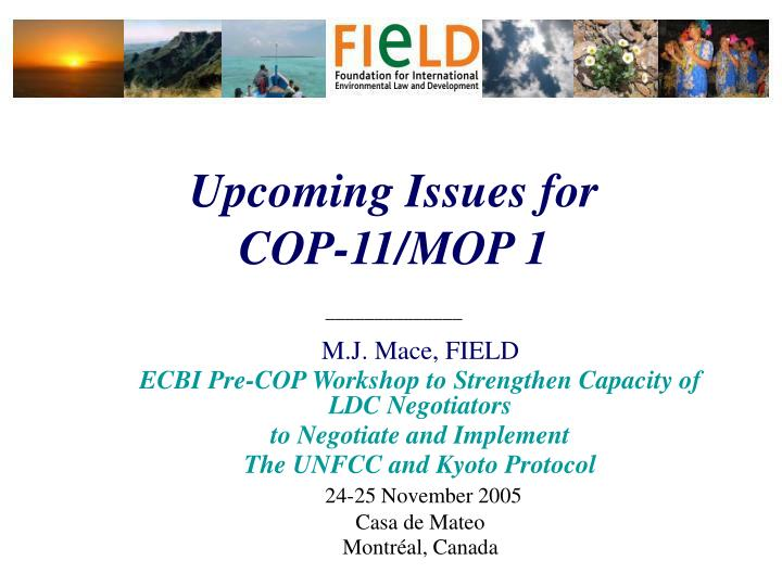 upcoming issues for cop 11 mop 1 n.